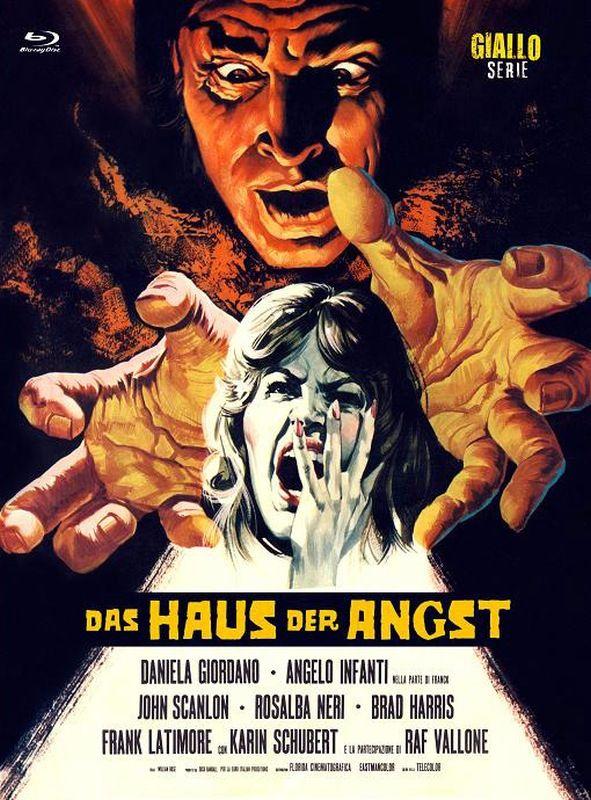 Haus der Angst, Das (Lim. Uncut Mediabook - Cover A) (DVD + BLURAY)