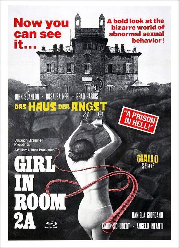 Haus der Angst, Das (Lim. Uncut Mediabook - Cover D) (DVD + BLURAY)