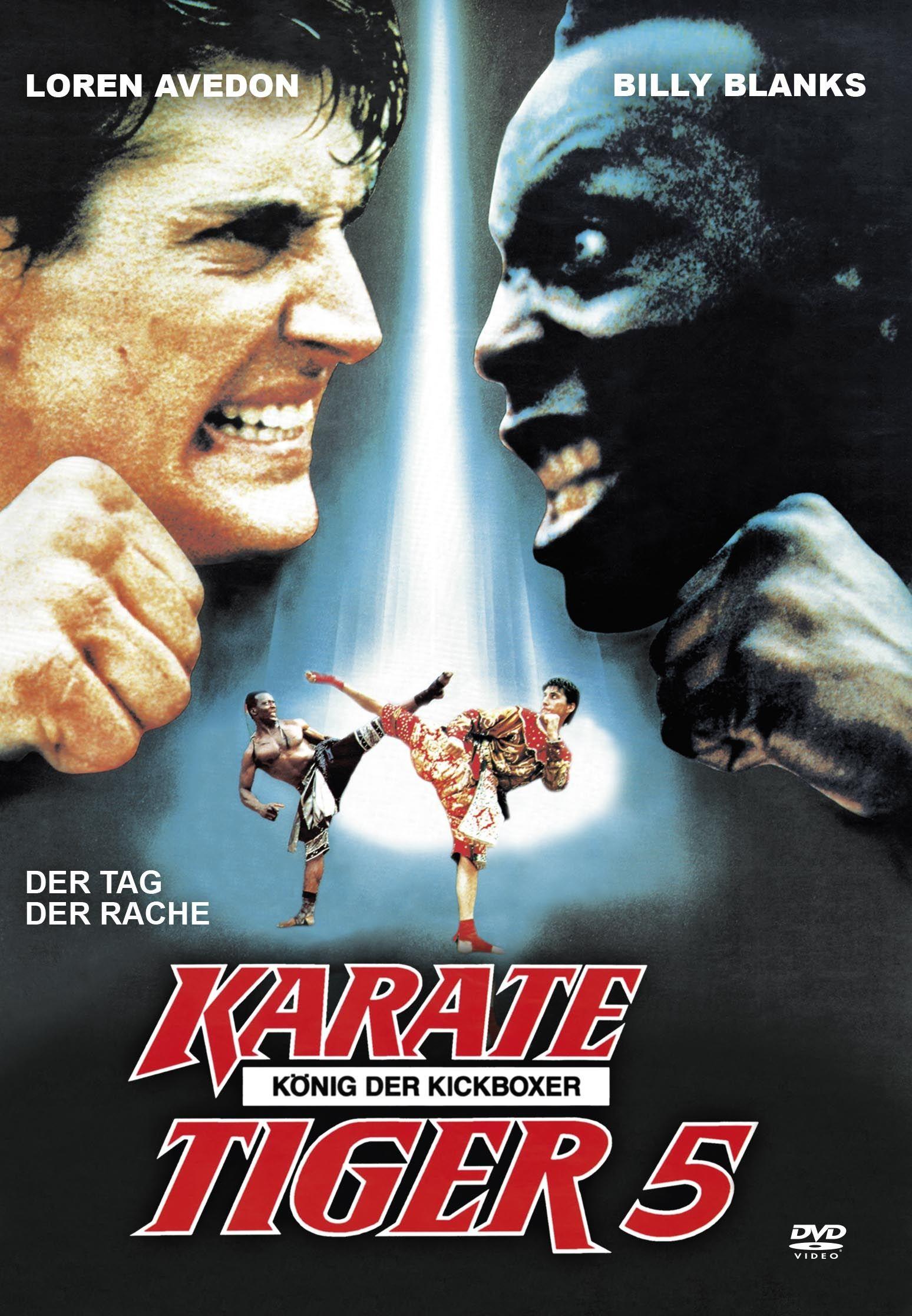 Karate Tiger 5 - König der Kickboxer