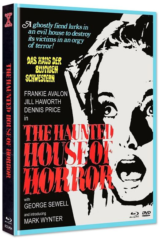 Gänsehaut - The Haunted House of Horror (Lim. Uncut Mediabook - Cover D) (DVD + BLURAY)